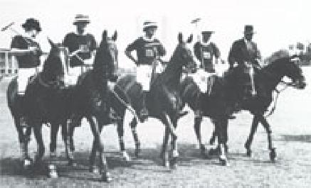 Polo Olympia 1936